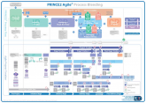 PRINCE2 Agile Process Model (A3 poster)