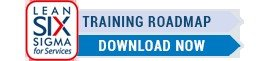 Lean Six Sigma Training Roadmap - Download Now